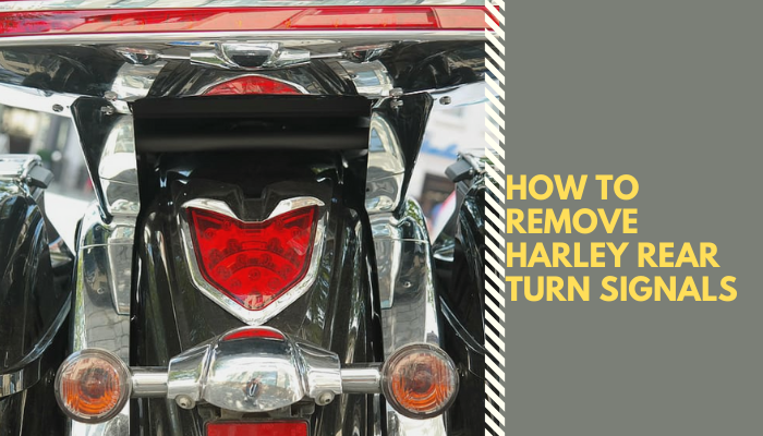 How_to_Remove_Harley_Rear_Turn_Signals